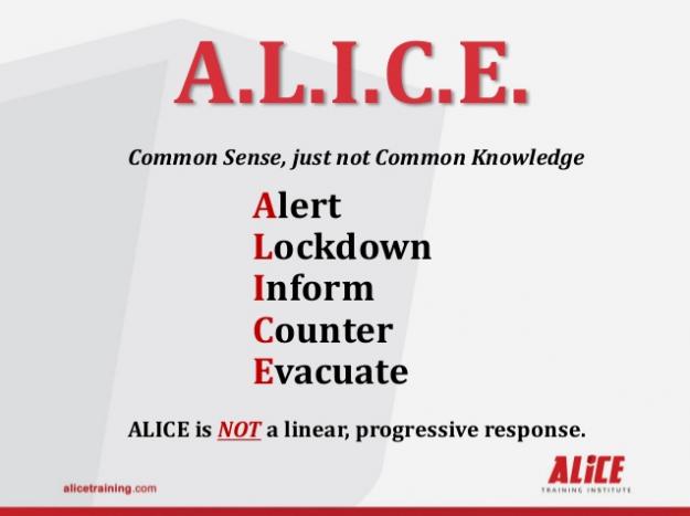 ALICE training